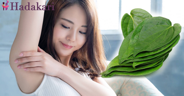 Be beautiful with betel leaves