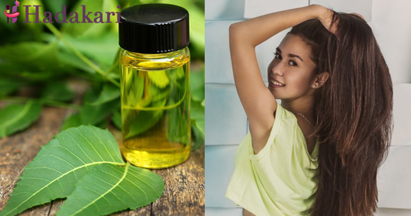 How neem oil can help to have full healthy hair